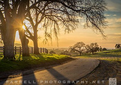 wIMG_6319-400-x-300-px-photo-of-country-road-sunset-by-Farrrell-Photography